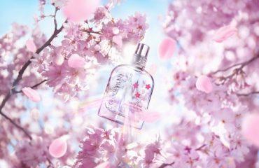 ロクシタンから、果実と桜の花の甘い限定フレグランス「チェリープリズム」