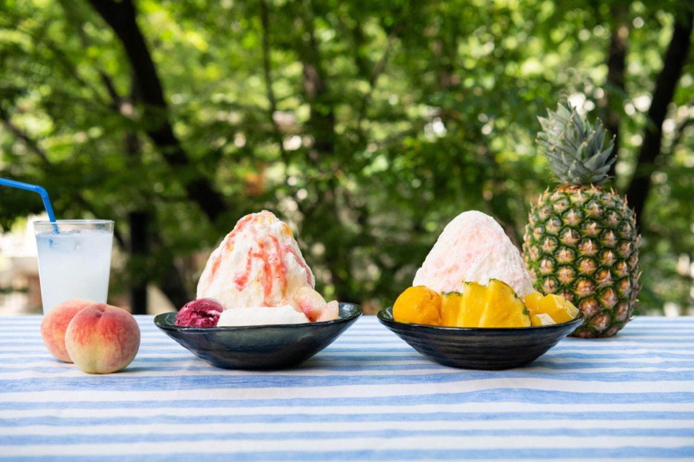 アイスモンスターから、「カルピス」を使用したかき氷にフルーツをトッピング