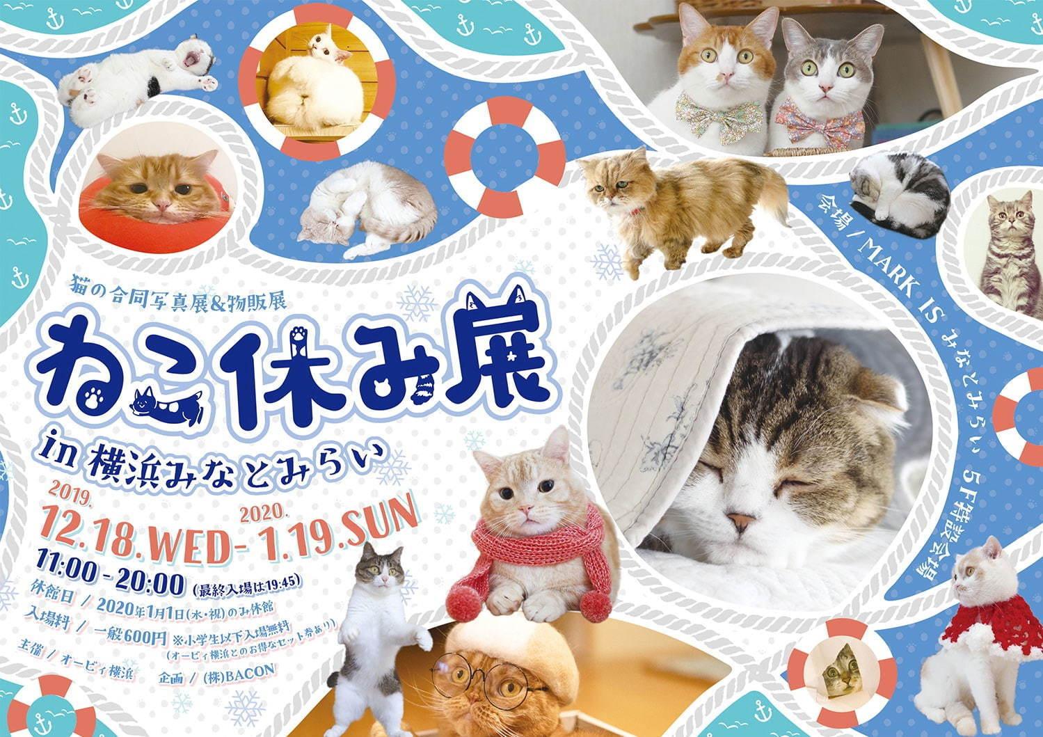 「ねこ休み展 in 横浜みなとみらい」が、横浜・マークイズみなとみらいにて開催!