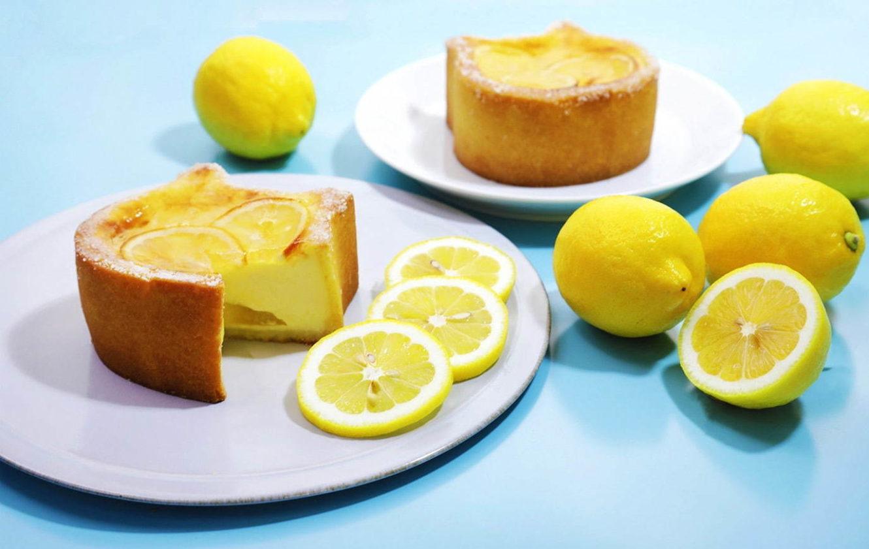 「ねこねこチーズケーキ」から、瀬戸内レモンを使った夏限定の新作